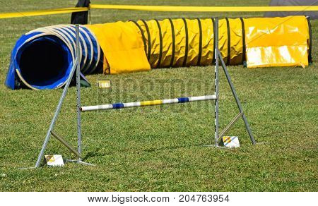 Hurdle gate and tunnel of the dog agility contest poster