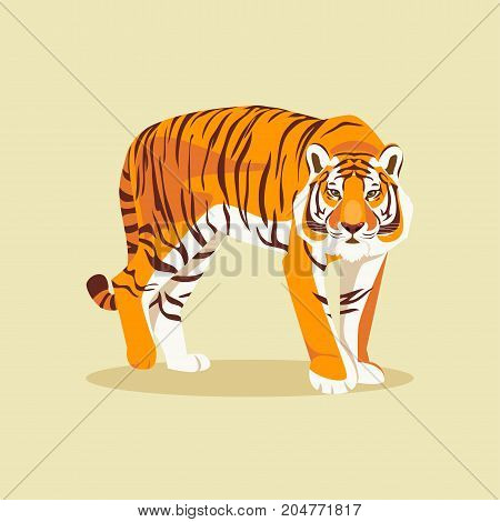 Wild Bengal tiger isolated on a light background. Vector illustration