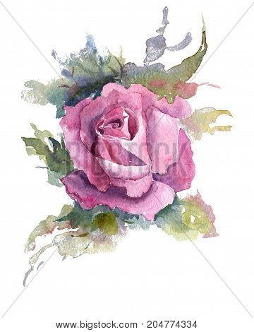 Flower, leaves of roses. Briar, watercolor painting for decoration