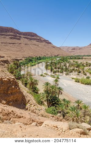 Palm lined dry river bed with red orange mountains in Morocco, North Africa.