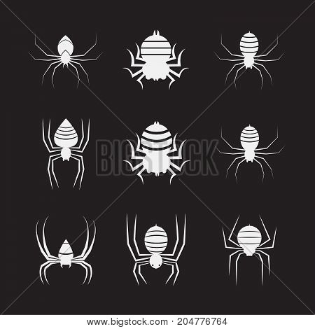 Vector group of spiders on black background. Insect. Animals. Spiders Icon.