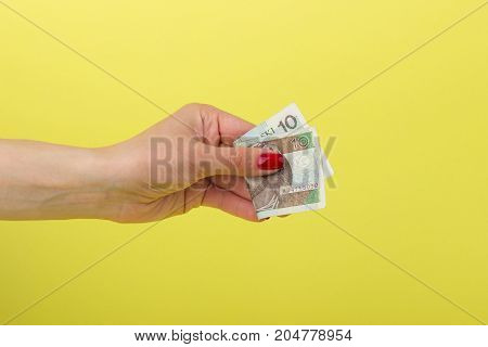 Ten Zloty In The Woman's Hand, Yellow Background