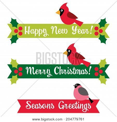 Christmas and New Year isolated banners with birds and holly berry