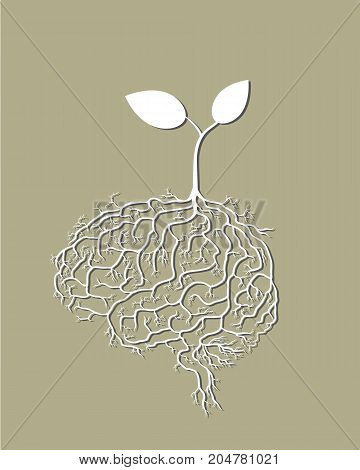 Young plant with brain root vector.illustration style.