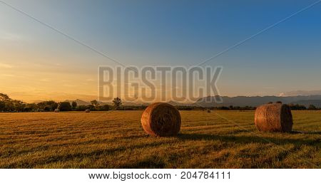 Countryside Landscape..hay Bales On Field At Golden Sunset.