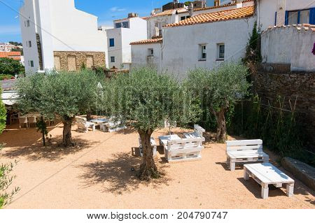 Courtyard With Seating And Olive Trees, In The Small Fishing Town Of Cadaques, Catalonia, Spain