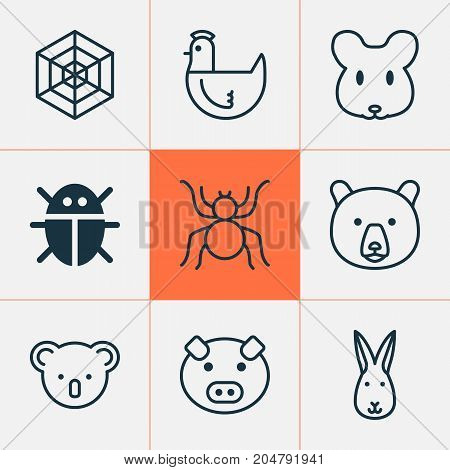 Zoo Icons Set. Collection Of Piglet, Marsupial, Beetle And Other Elements