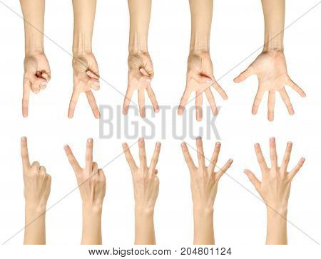 Counting Female Hand With French Manicure Isolated