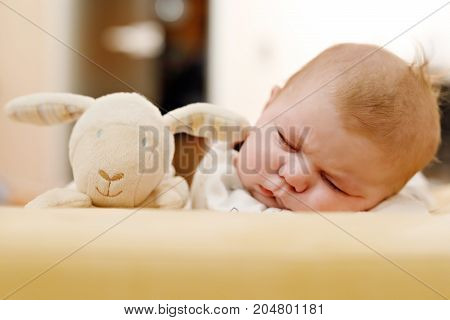 Cute adorable newborn baby sleeping on belly with plush toy. New born child, little adorable girl of two months dreaming peaceful. Family, new life, childhood, beginning concept.