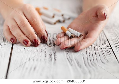 Closeup Of Female Hand Holding Broken Cigarette On Palm Quitting Smoking Concept.