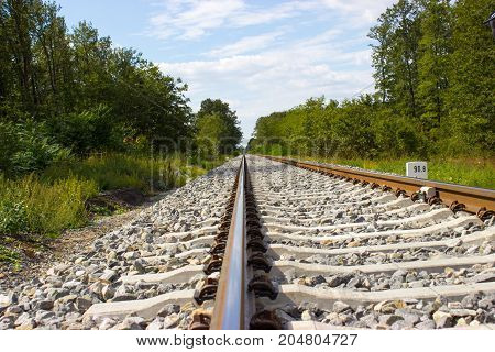 Railroad tracks are running behind the horizon. Trees and bushes grow on the sides. There are two tourists along the way.