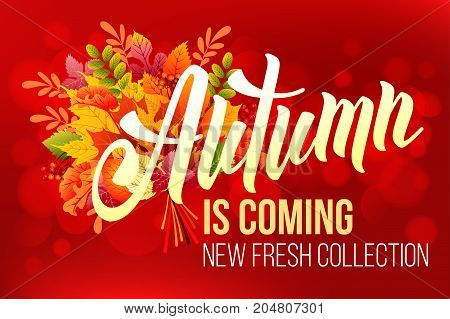 Unusual calligraphic inscription Autumn is coming with bouquet of autumn leaves. Conceptual vector illustration for advertising new product or announcement other events.