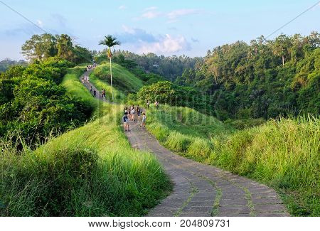 Campuhan Ridge Walk at Sunset Scenic Green Valley in Ubud Bali