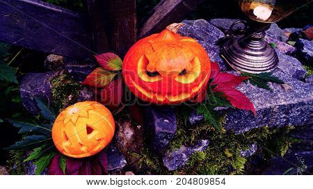 Halloween pumpkins on stone with moss in a creepy forest. Lamp on the background.