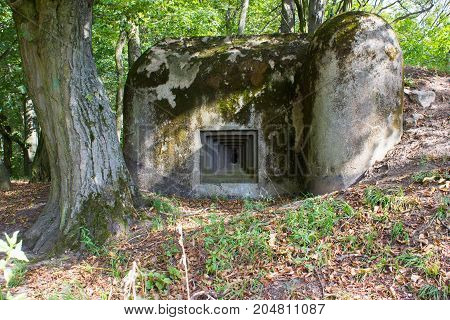 An old military bunker in forest. In the foreground is bunker. On the background are trees.