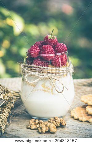 Homemade yogurt with raspberries and cereals. Useful breakfast