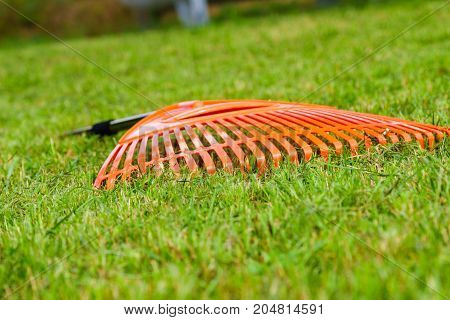 Orange rake on stick on green grass lawn garden tools