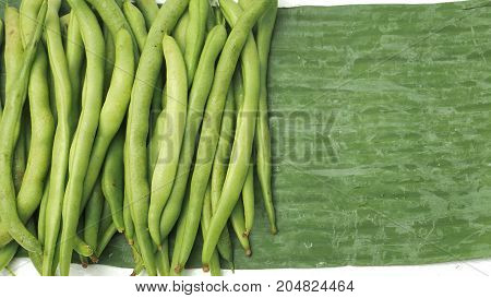 Background of string bean raw vegetable green color of pure and real nature Photo full frame has copy space.