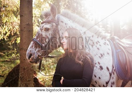 Young caucasian woman taking care of her horse, hugging his neck. Horse is white in brown spot. They are walking in forest. Film effect