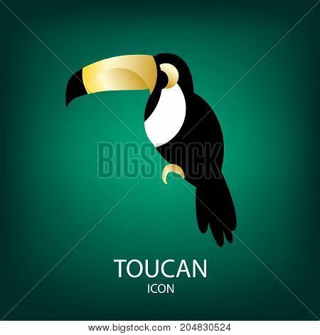 Vector icon with toucan on green background. Flat design.