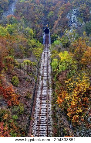 Railroad tunnel in the mountain and colorful autumn forest