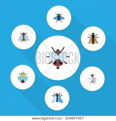 Flat Icon Fly Set Of Buzz, Tiny, Fly And Other Vector Objects