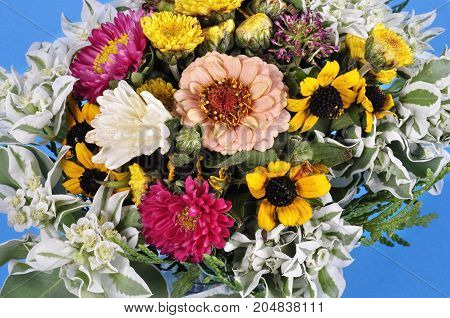 Bouquet of different wildflowers in a glass on a blue background