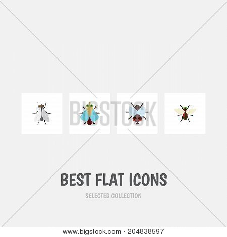 Flat Icon Buzz Set Of Tiny, Bluebottle, Buzz And Other Vector Objects