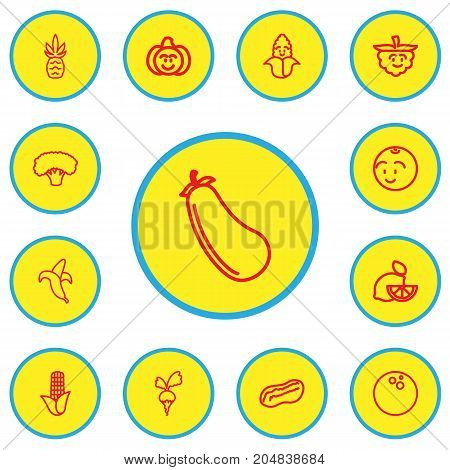 Set Of 13 Editable Kitchenware Outline Icons. Includes Symbols Such As Radish, Cocos, Lemon And More