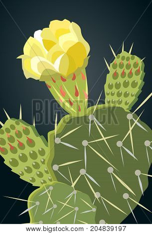 Prickly Pear Cactus with Yellow Flower 1