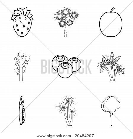 Kailyard icons set. Outline set of 9 kailyard vector icons for web isolated on white background