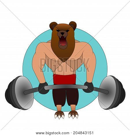 the big angry bear with the human body in the gym raises the rod. weight lifter
