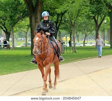 Washington DC - May 1, 2011: Police officer patrolling on horseback in Washington DC