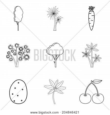 Own vegetable icons set. Outline set of 9 own vegetable vector icons for web isolated on white background