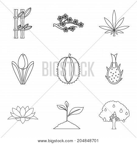 Grow food icons set. Outline set of 9 grow food vector icons for web isolated on white background