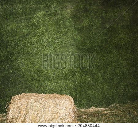 Scene with hay in the meadow. Beautiful scenery. A stack of hay. sheaf of hay. Green grass - background. Hay on a background of gr
