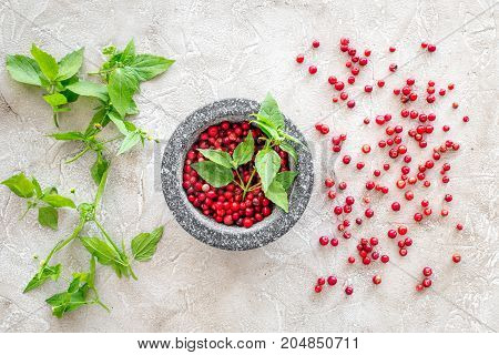 mortar with berries, herbs and spices ingredients on stone desk background top view