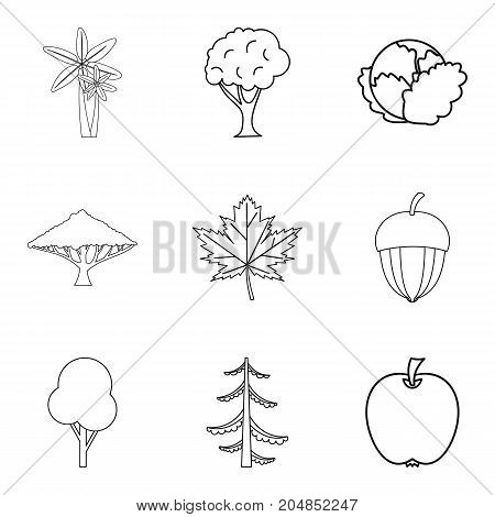 Kitchen-garden icons set. Outline set of 9 kitchen-garden vector icons for web isolated on white background