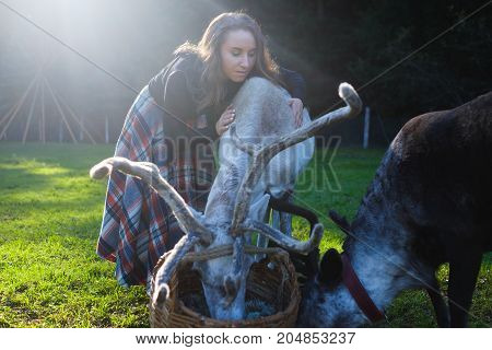 Woman in a plaid skirt feeding reindeer tarandus on green field in summer.n Take care about animals at farm
