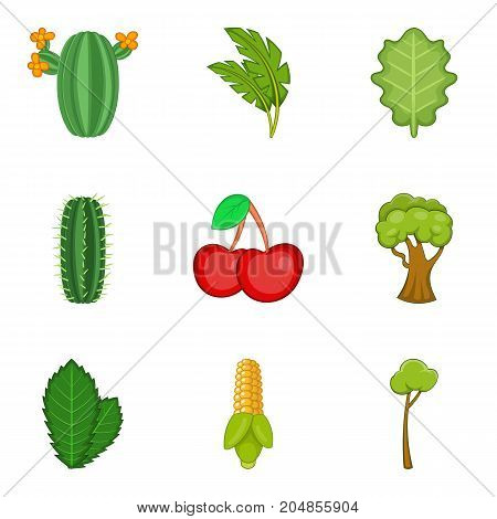 Green plants icons set. Cartoon set of 9 green plants vector icons for web isolated on white background