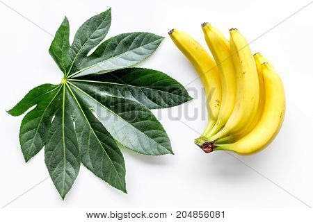 Tropical fruits background. Bananas and exotic palm leaf on white top view.