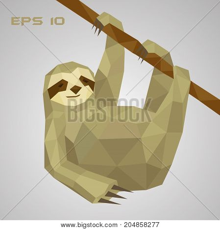 Sloth low poly. A lazy animal hangs on a branch and holds a paw. Low-field mammal. Vector illustration. EPS 10.
