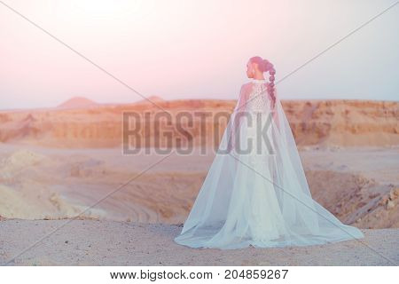 Woman In Wedding Dress And Veil
