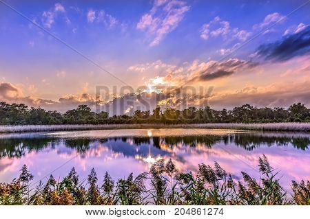 A stunningly beautiful golden sunset on a pond near the Chesapeake Bay in Maryland