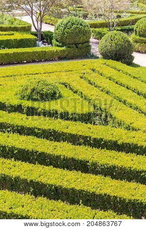 Neat Park With Topiary Plants Smooth Lines