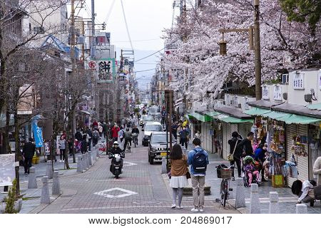 JAPAN, NARA, APRIL, 06, 2017 - View of the cherry blossom at Sanjo Dori Street leads people to UNESCO world heritage sites, mixed with old shrines modern architectures and a shopping street in Nara, Japan