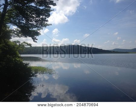 Sweet serenity. Serene lake side landscape with wood line