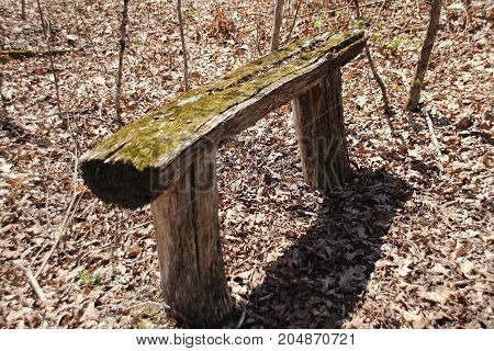 Wooden bench made from logs in the woods with moss growing on top