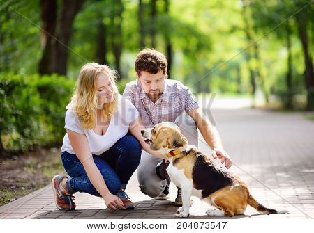 Young couple with Beagle dog in the summer park. Obedient pet with his owner practicing command