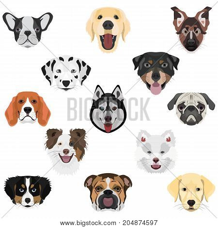 Illustration Collection Dogs